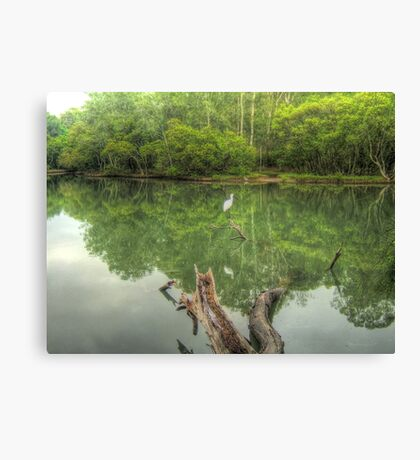 Reflections of Booragul Canvas Print