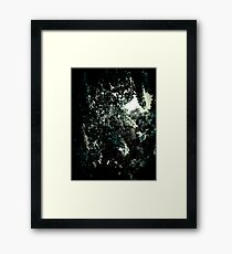 The Trees - From the Shadows Framed Print