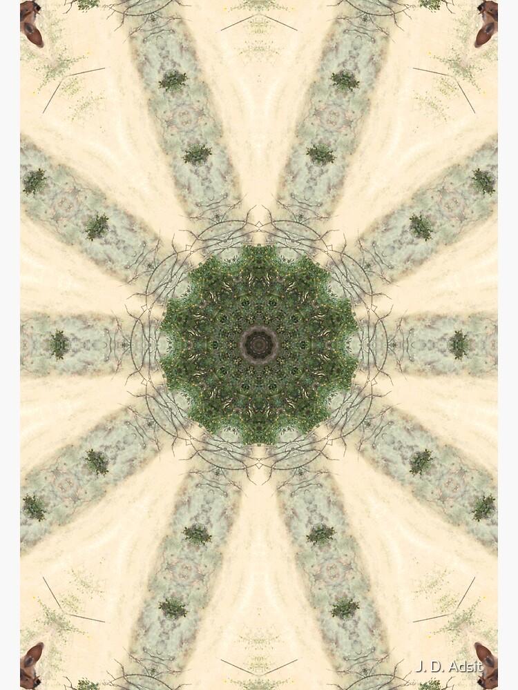 Rustic Pinwheel by adsitprojectpro