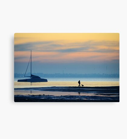 Must love long strolls along the beach, preferably with tennis balls... Canvas Print