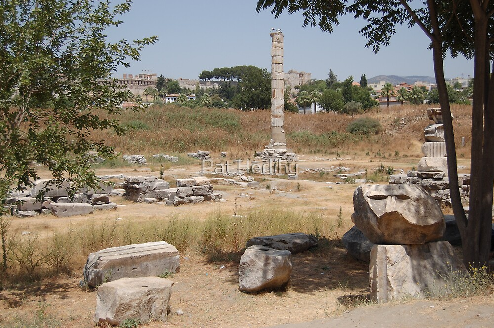 The Temple of Artemis(Diana) at Ephesus - What remains of this Wonder of the Ancient World by Pat Herlihy