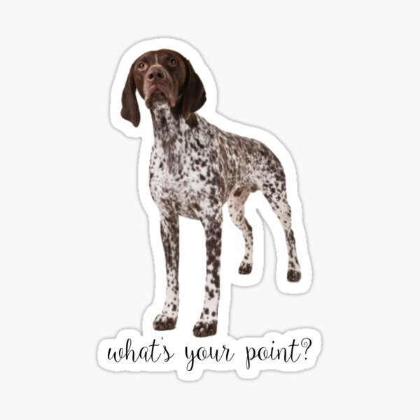 german shorthaired pointer what's your point Sticker