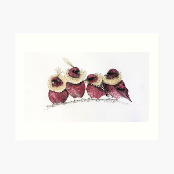 Jacobean Birds Art Print