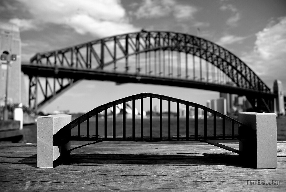 Big Bridge Small Bridge by Tim Beasley