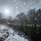 The Winter Night by Ursula Rodgers Photography
