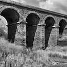 Bluestone Railway Bridge - Sunbury by Colin  Ewington