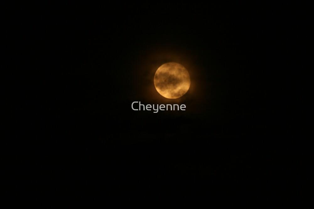 Haunted by Cheyenne