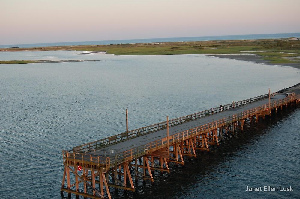 Top of the Bridge by Janet Ellen Lusk