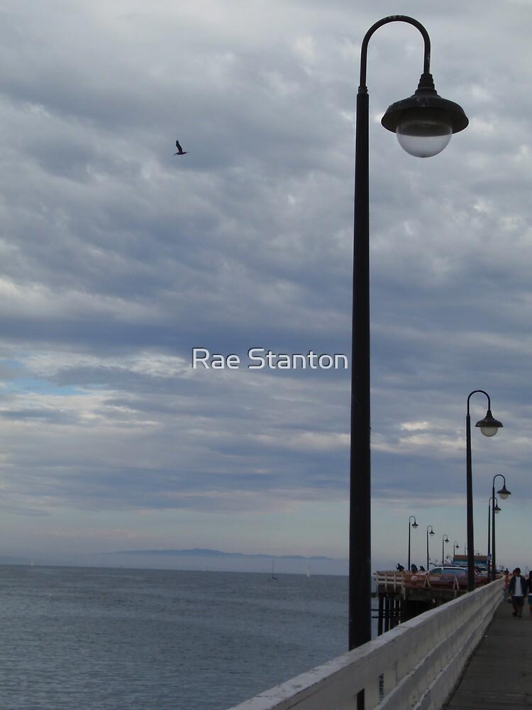 flying by Rae Stanton