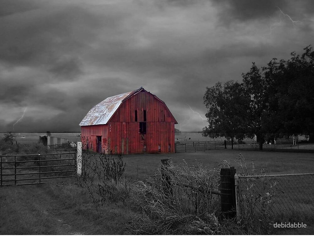 Oklahoma Red Barn by debidabble