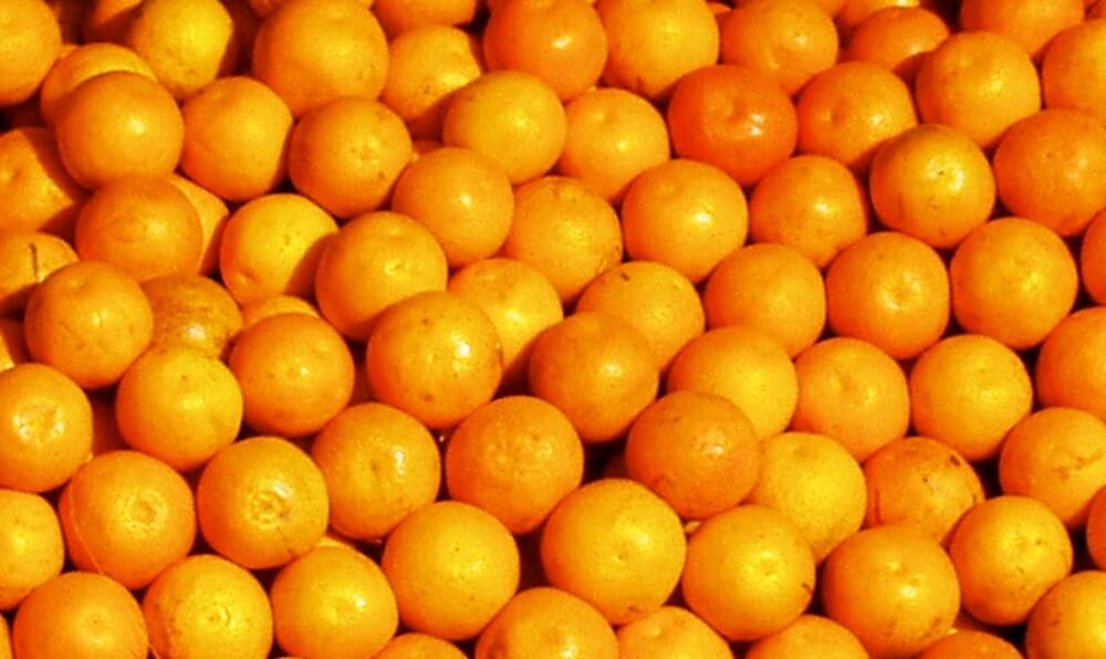 Oranges by Alastair Humphreys