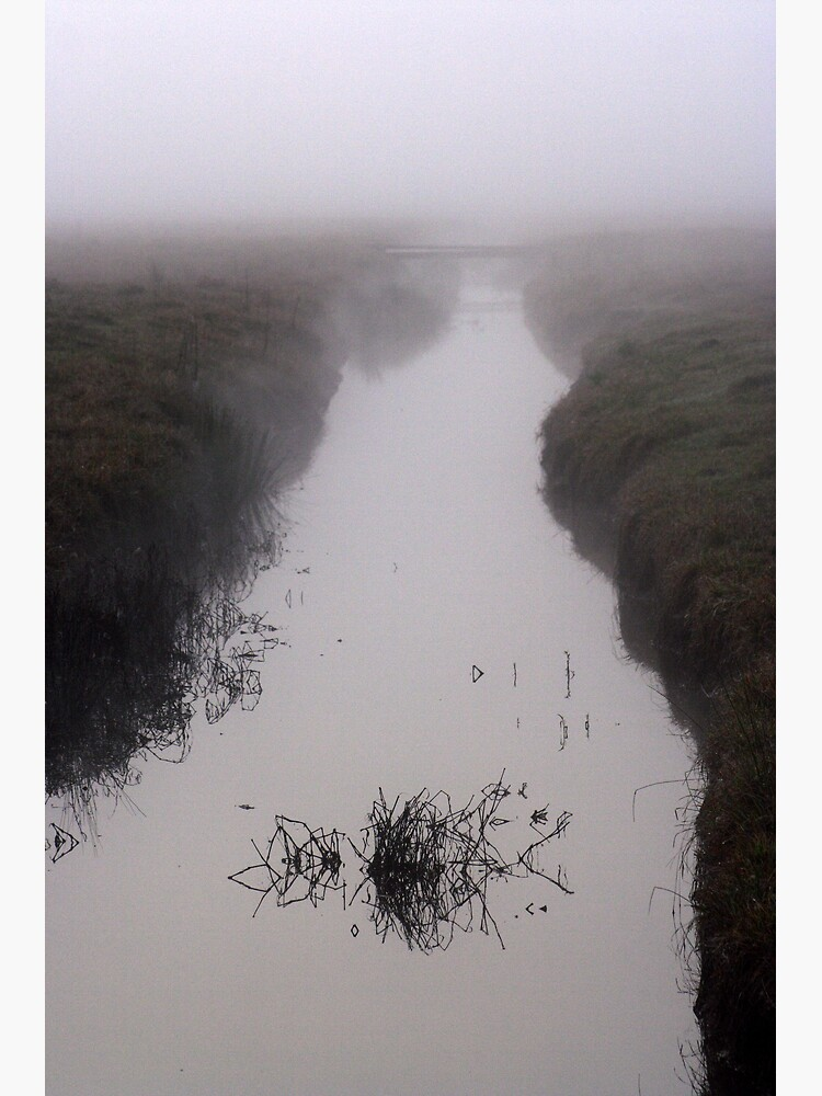 Misty Marsh by theoddshot