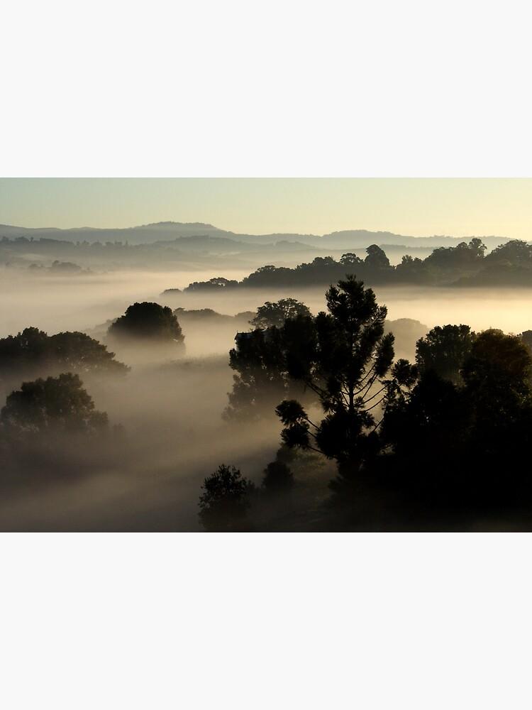 Misty Morning by theoddshot