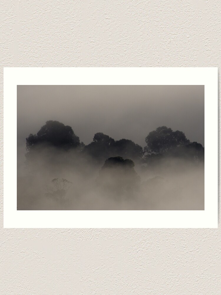 Alternate view of Trees in the Mist Art Print