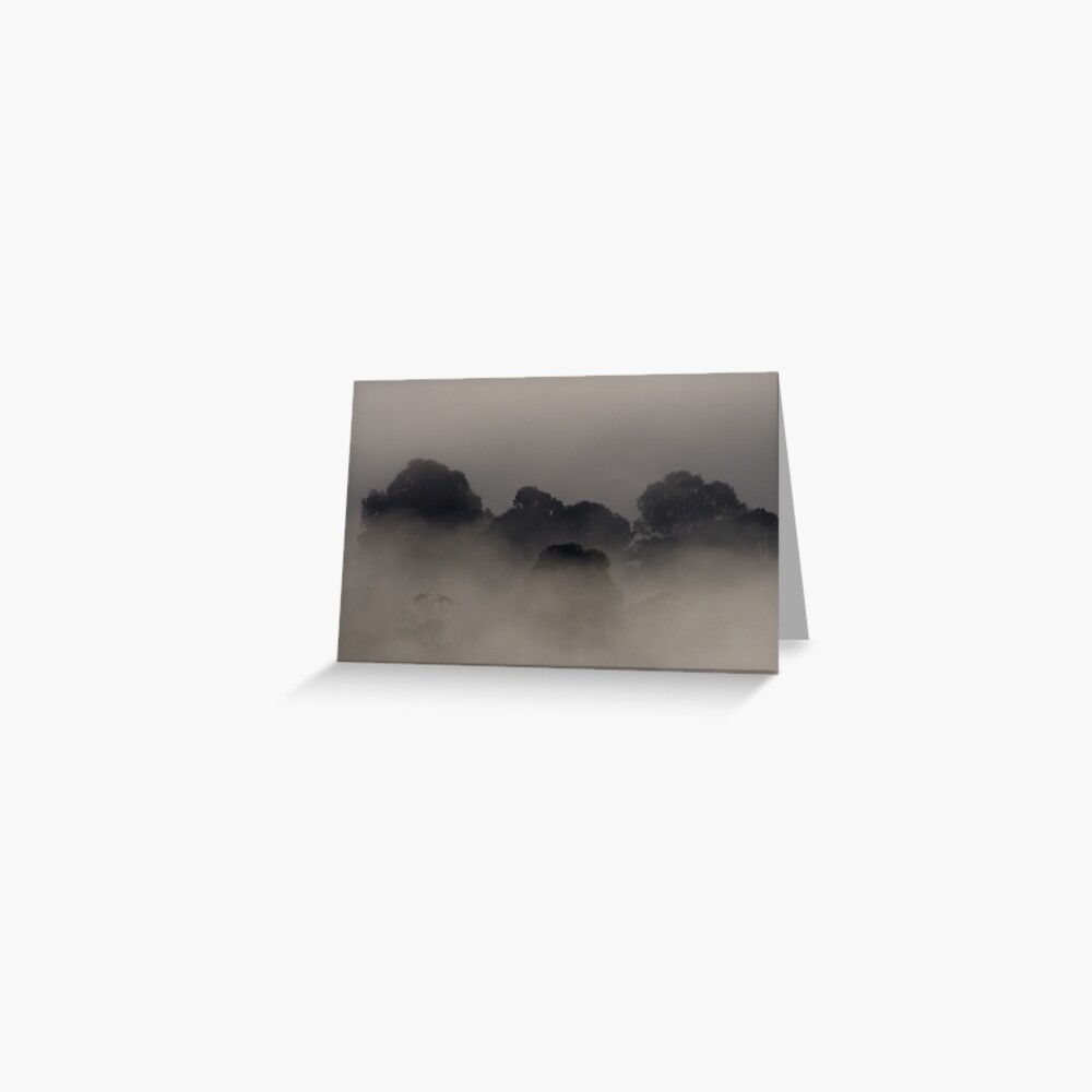 Trees in the Mist Greeting Card