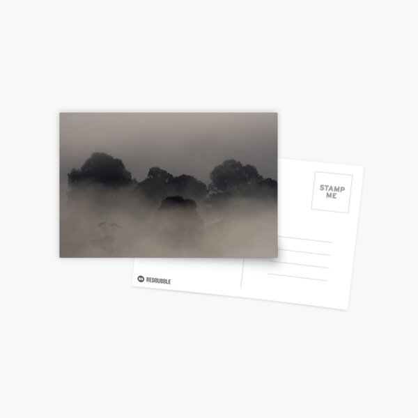Trees in the Mist Postcard