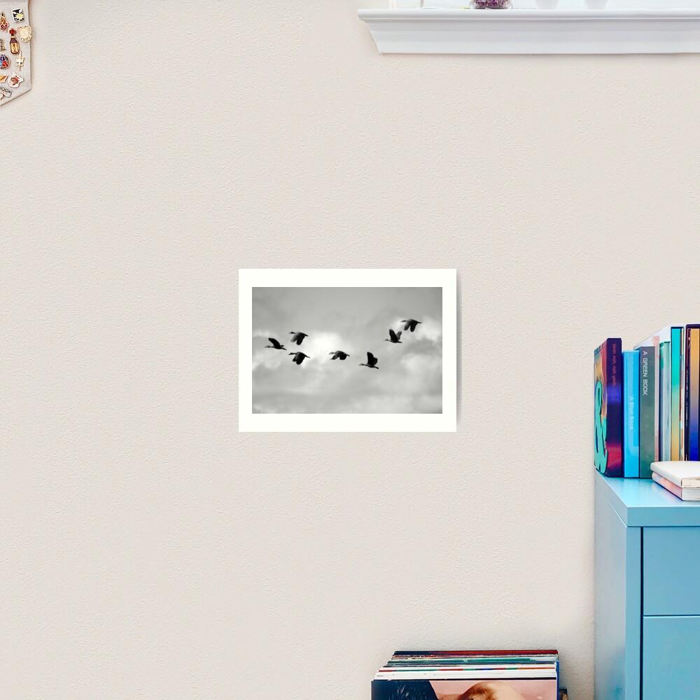 Flight Seven Art Print