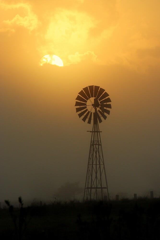 Windmill Sunrise by Trevor Farrell