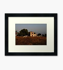 Island Horse in Field Framed Print