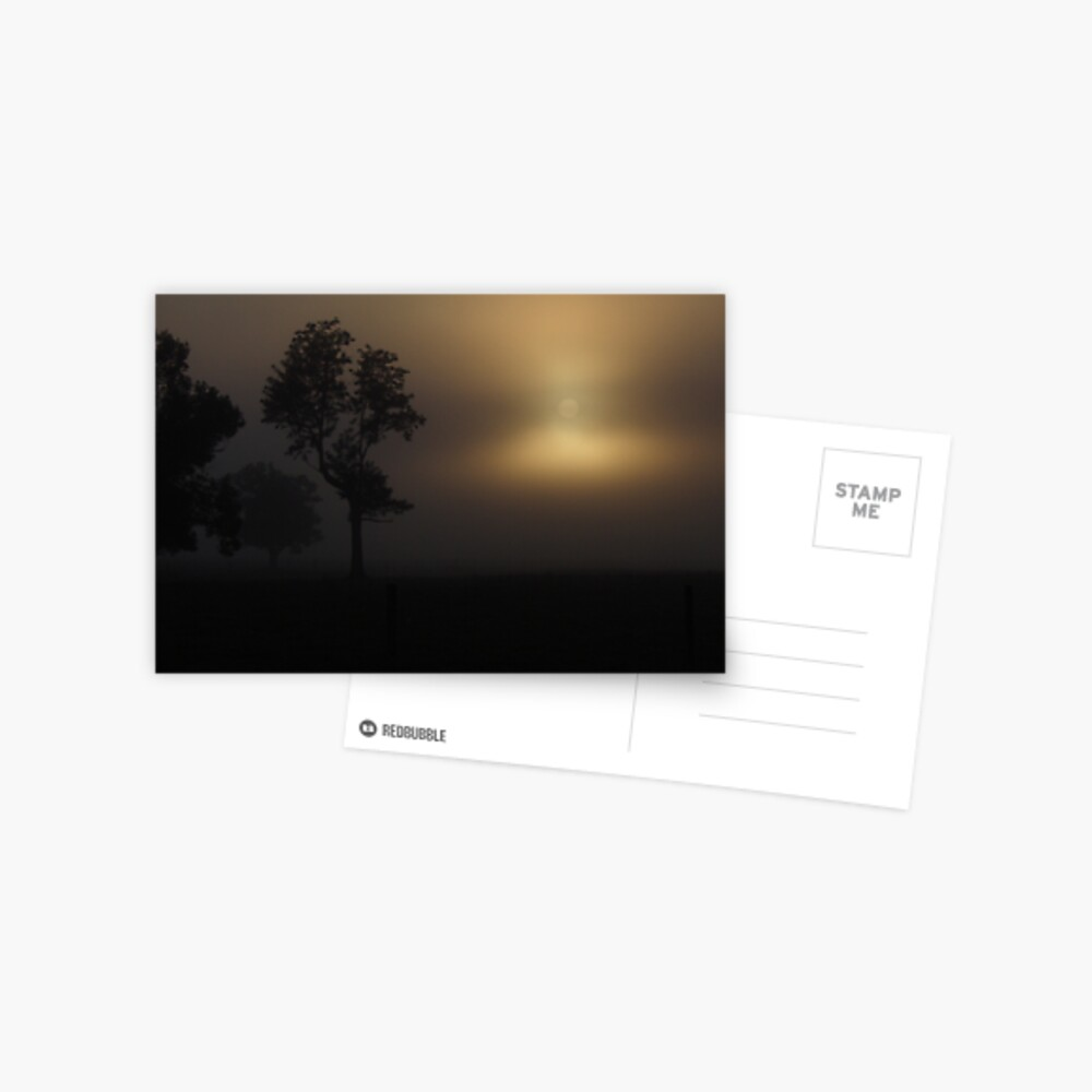 Foggy Sunrise Postcard
