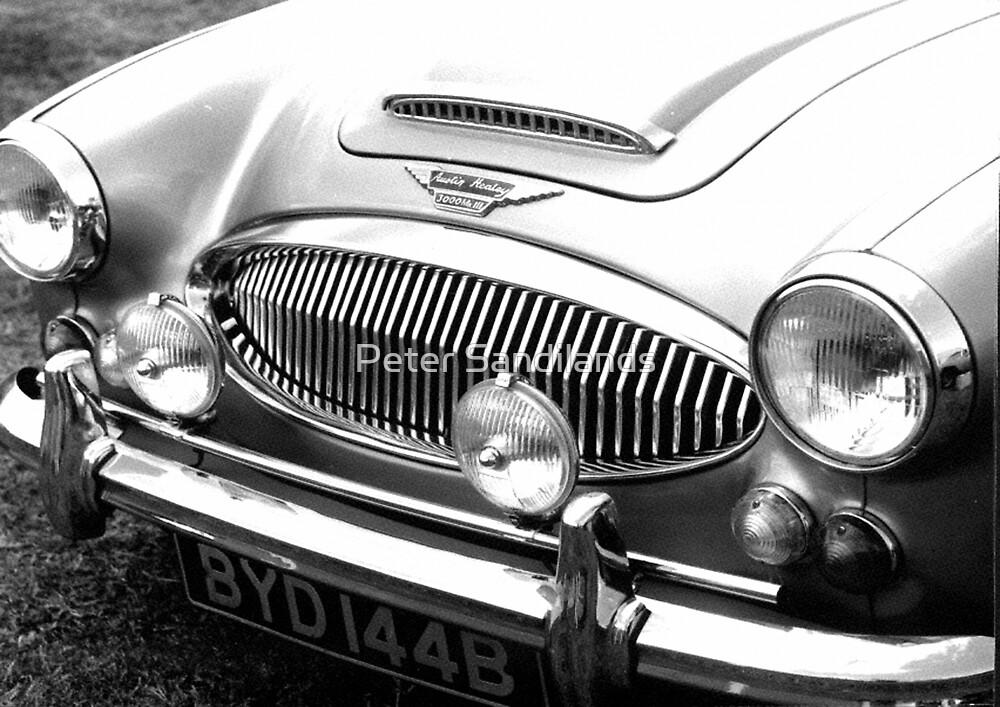 1964 Austin-Healey 3000 Sports Car by Peter Sandilands