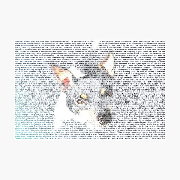 For the Love of a Rat Terrier Photographic Print