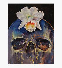 Voodoo Skull Photographic Print