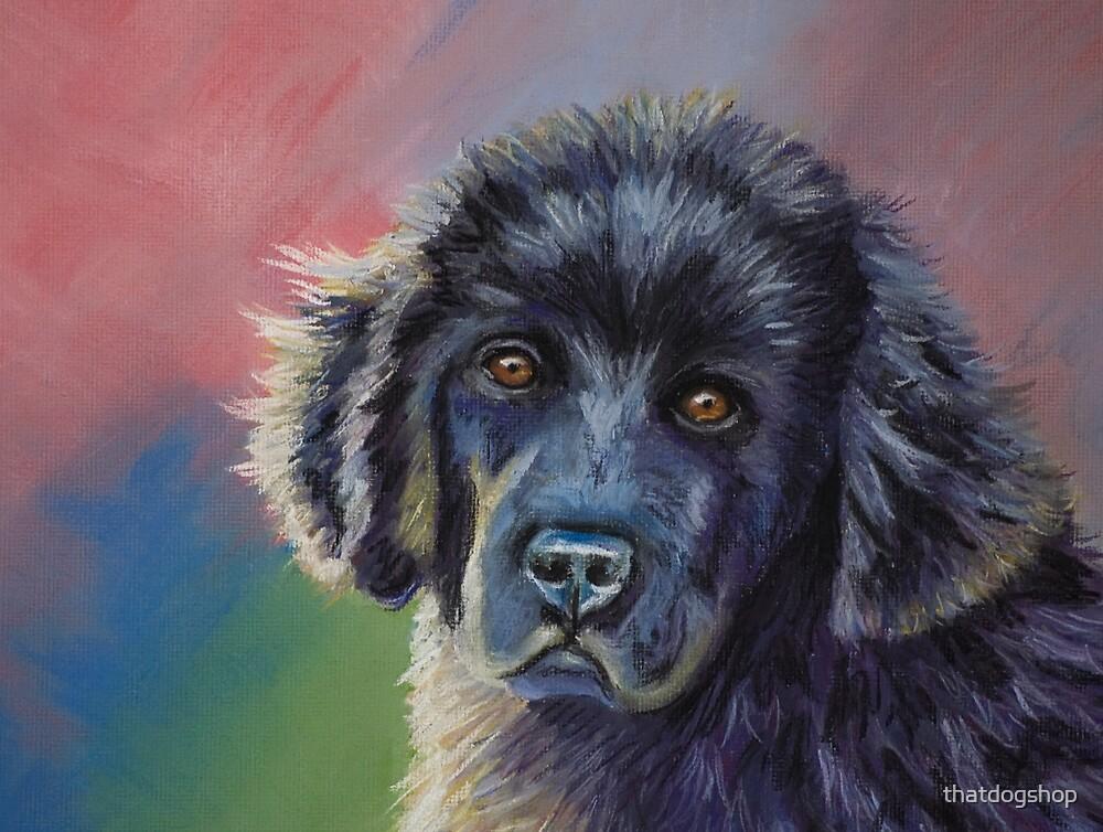 """Rainbows & Sunshine"" by Michelle Wrighton by thatdogshop"