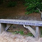 For The Beauty Of The Earth (Seat) by lezvee