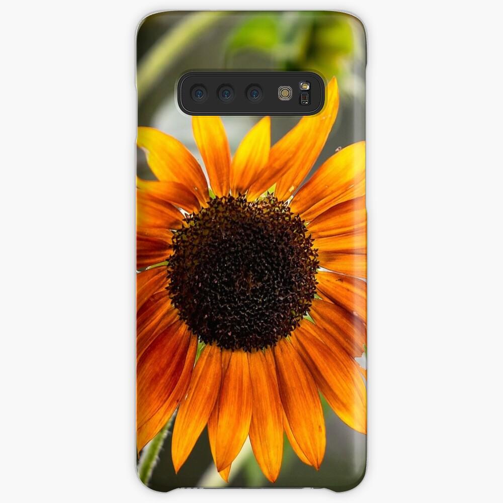 Orange Sonnenblume Hülle & Klebefolie für Samsung Galaxy