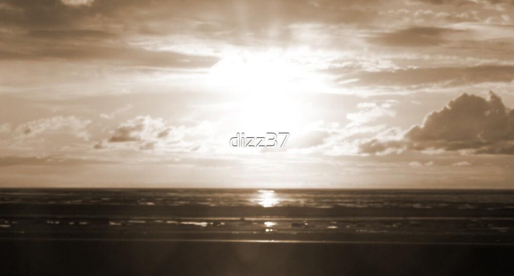 sunset by dizz37