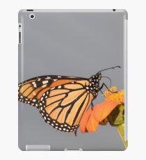 Monarch 2017-9 iPad Case/Skin