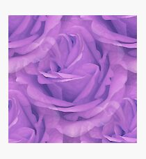 Seamless Purple Rose Vector Photographic Print