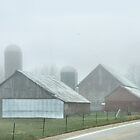 Mist Rising on a Country Road by Nadya Johnson