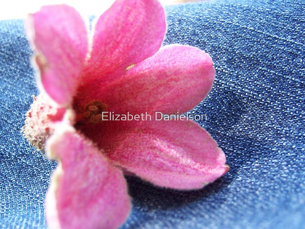 fell on me by Elizabeth Danielson