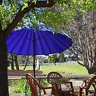Cafe Parasol by lezvee
