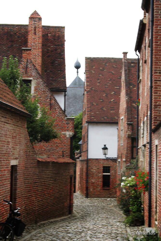 The Old street of Leuven (Belgium) 2 by Antanas