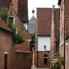 The Old street of Leuven (Belgium) 2 by Antanas
