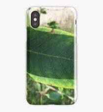 Simplistic leaf iPhone Case/Skin