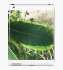 Simplistic leaf iPad Case/Skin