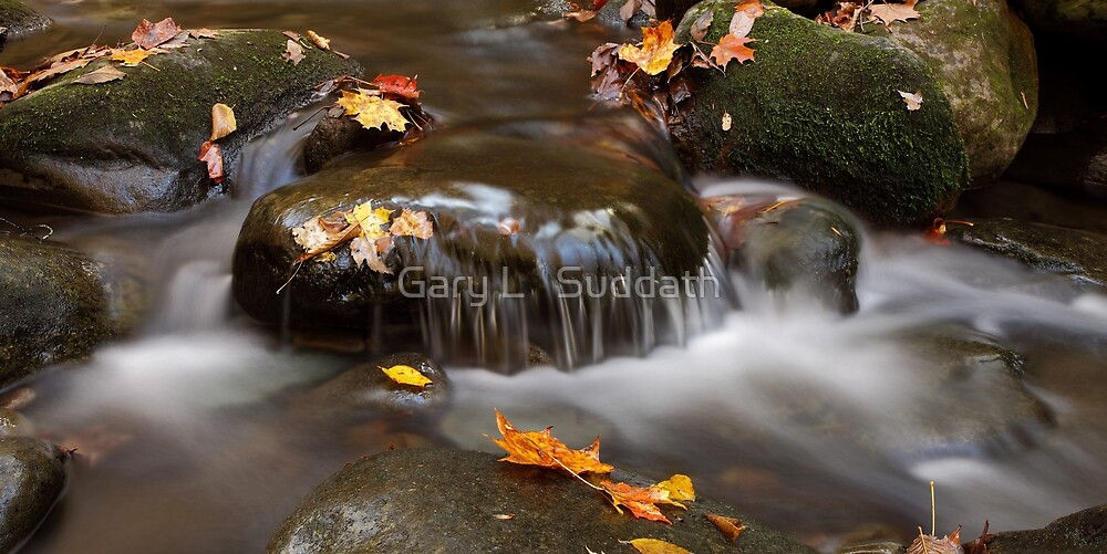 Whispers by Gary L   Suddath
