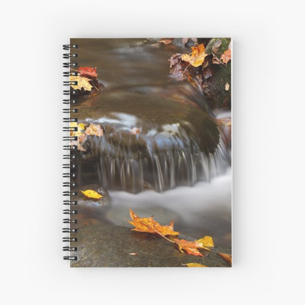 Whispers Spiral Notebook