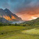 Sunset in Lofoten, Norway by Frank Olsen