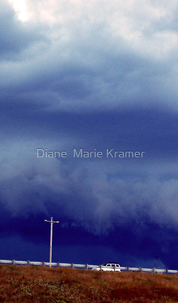 Into the Storm by Diane  Marie Kramer