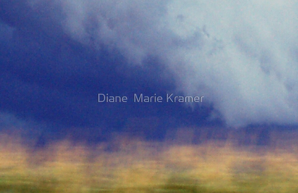 Where are we going? by Diane  Marie Kramer