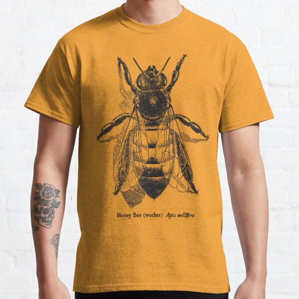 Honey Bee -  Vintage Scientific Illustration Classic T-Shirt