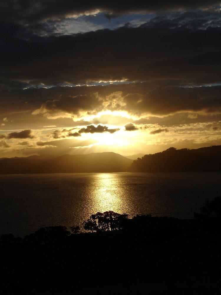 Golden Sunset II by Lisa Phillips