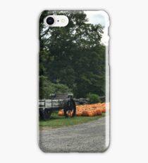 Pumpkin Patch iPhone Case/Skin