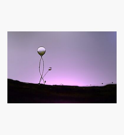 Inverted Dewdrop Enhance Photographic Print
