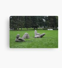 Total chill Canvas Print